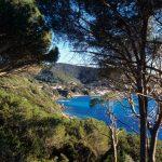 Uno scorcio che mi narra quanto sia azzurro il mare equanto sia  verde la natura  vista come dietro la quinta degli alberi